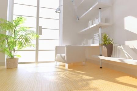 Proposte immobiliari edilcrea for Piante da interno alte